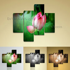 Large Floral Water Lily Wall Art On Canvas Living Room Four Pieces print
