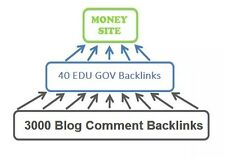 40 EDU GOV Backlinks Pyramid for TOP SEO Rank with Access