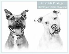 TWO Pet Portrait from Photo Digital Drawing Professional Artist - Cat Dog Horse