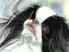 Japanese Chin Dog Art Print of Watercolor Painting Artist Judith Stein Signed