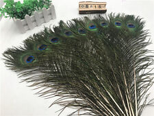 Beautiful !10-100pcs natural peacock feather 10-32inches / 25-80cm free shipping