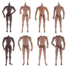 1/6th Action Figure Muscular Muscle Male Nude Body for Hot Toys TTM18 TTM19 Head