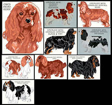 CKCS & ENGLISH TOY SPANIEL COUNTED CROSS STITCH PATTERN