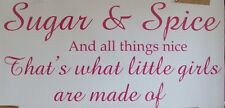 """SUGAR AND SPICE ALL THINGS NICE"" STUNNING WALL QUOTE ART VINYL STICKER DECAL"