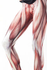 0101 Muscle Anatomy Leggings Tights Hot Girls Womens Crossfit Yoga Gym Large