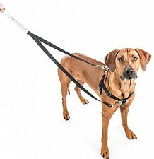 Freedom No Pull Harness and Leash Training Kit Multi Colors Med-XL NWT