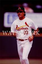 Tony LaRussa Cardinals Manager Baseball Color 8x10 11x14 12x18 Photo AD444