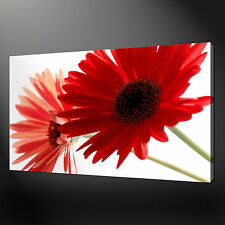 RED GERBERA FLORAL QUALITY CANVAS PRINT WALL DESIGN READY TO HANG