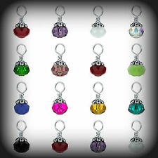 Origami Owl NEW Crystal Birthstone Element TAG Dangle YOU CHOOSE Authentic
