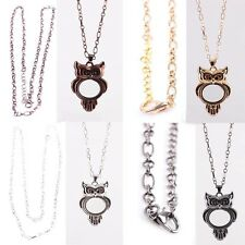 Living Memory Locket Crystal Owl Necklace Floating Charm Pendent Charms Chain