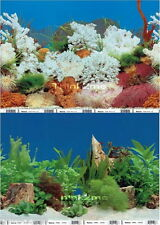 """Tall 20""""/50cm Aquarium Fish Tank Background 2 Sided Reptile Picture IMAGE Wall"""