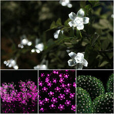 Solar Powered 10M 80LED Waterproof Blossom Wedding Fairy Lights for Garden Trees