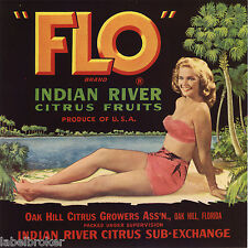 FLO CRATE LABEL FLORIDA 9X9 PIN UP OAK HILL BEAUTY 1940S VINTAGE ORIGINAL BEACH