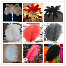 Wholesale 10/50/100pcs High Quality Natural OSTRICH  FEATHERS 6-24'inch/15-60cm