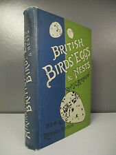 J.C. Atkinson - British Birds' Eggs & Nests - Routledge - 1899 (ID:546)