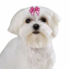 DOG GROOMING BOWS Jasmine Barrette Pet Cat Puppy Hair Bows Spring Clip Backing