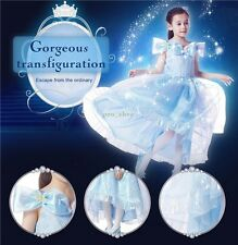 Girls Cinderella Butterfly Glitter Princess Gown Cosplay Fancy Dress Costume