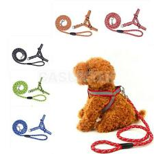 Reflective Rope Dog Pet Puppy Safety Noctilucent Harness Leash Strap Rope PICK