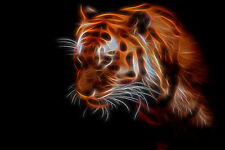 Abstract Bengal Tiger Home Decor Canvas Print Choose Size