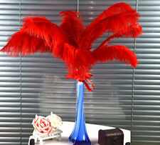 10-100pcs beautiful red ostrich feathers (6-8 inch / 15-20 cm)