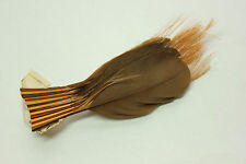 Vintage Antique Feather Millinery fancy trim made in France 3315