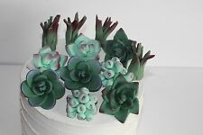 Succulents Edible Sugar Cupcake Topper Cake Decoration Rustic Wedding Birthday