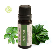 Betel Leaf Oil Pure and Natural Therapuetic Grade Essential Oil