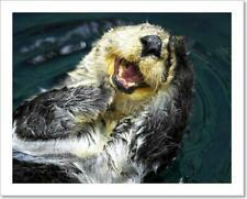 Sea Otter Art Print/Canvas Print Home Decor Wall Art