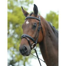 Kincade Padded Dressage Bridle w/Flash - Black - Cob, Horse, or Warmblood