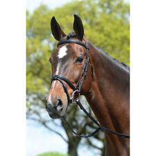 Kincade Padded Lined Event Bridle w/Flash - Black or Brown - Size: Horse