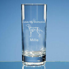 Dalmatian Dog Lover Gift Personalised Hand Engraved Highball Glass Gift