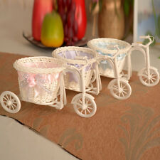 Tricycle Bike Flower Basket Plant Stand Holder Wedding Home Tabletop Decor Witty