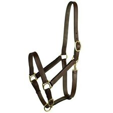 Gatsby Leather Halter - Brown - Weanling or Yearling