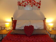 ROMANTIC GETAWAY AUGUST HOLIDAY COTTAGE let North Wales Snowdonia Availability