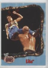 2002 Fleer WWE Absolute Divas #45 Lita Rookie Wrestling Card