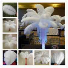 Wholesale 10-100pcs High Quality Natural OSTRICH FEATHERS 6-28inch/15-70cm white