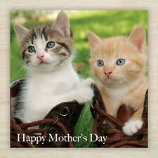 Mother's Mums Day Greetings Card -  Perfect for Cats & Kittens Fans