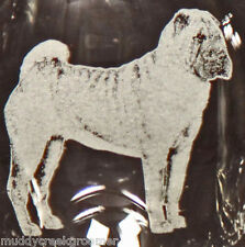 Chinese Shar Pei Dog Laser Etched Glasses- CHOOSE your glass style