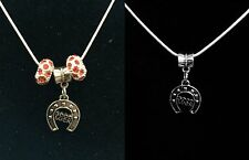 Silver color Necklace with Horse Shoe Good Luck Charm