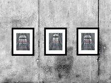 Set of (3) Three - Behind the Curtain Crow Matted Picture Art Print A527