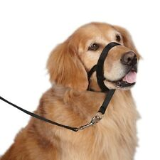 Training Head Collars for Dogs - Train your Dog to Stop Pulling & Walk Straight