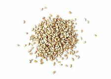 HARD RED WHEAT BERRIES (8 oz to 50 lbs) - Sproutable for Wheatgrass