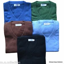 Nepalese 100% Cashmere Pashmina Mens V-neck Sweater Jumper Top Cardigan