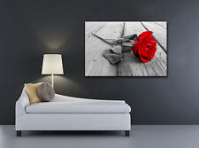 LARGE BOX FRAMED CANVAS WALL ART RED ROSE PICTURE STUNNING PRINT FLOWER  A0 A1