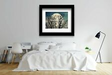 Crow Murder Tree against Full Moon Original Matted Picture Photo Art Print A541