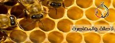 Yemeni Sidr (ilb), Sumor (talh) and other kinds of Honey [ 70 grams Sample ]