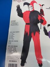 Wicked Chamber Jester Medieval Court Clown Halloween Child Costume 2 COLORS