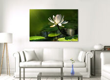 LARGE CANVAS WALL ART GREEN & WHITE FLOWER CALMING PICTURE STUNNING NEW PRINT