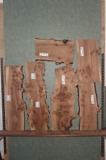 English Burr Elm Waney/Natural Edge Planks/Blank/Board/Wood/Shelf/Timber/Plaque