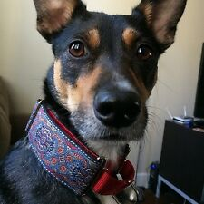French style WIDE Martingale dog collar: Velvet lined 2 inch wide